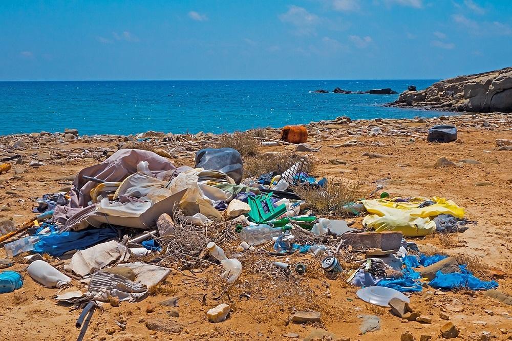 Somos la única especie que destruye, contamina y arrasa con todo