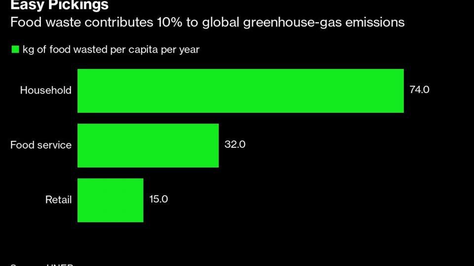 #CambioClimático: En un año se desecharon miles de millones de toneladas de alimentos