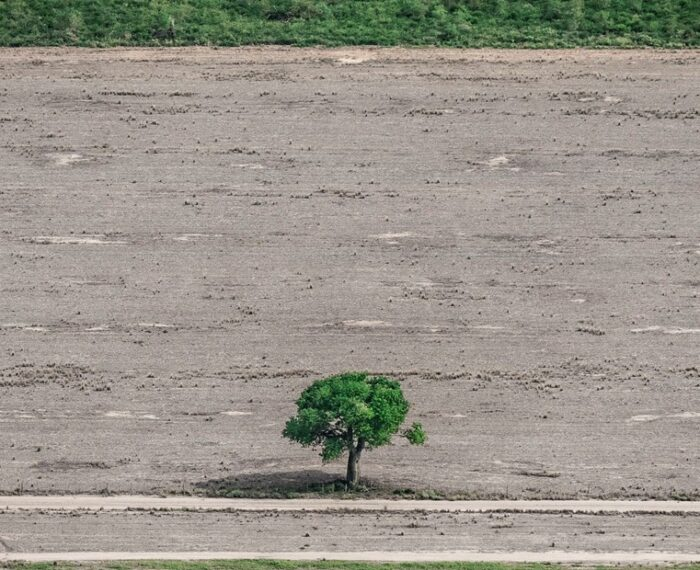 #CambioClimático: Solo queda intacto un 2,5% de la superficie de la Tierra