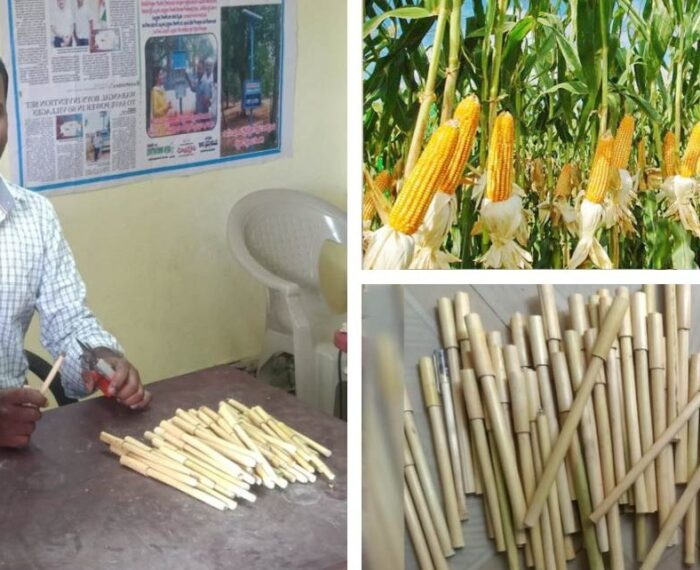 Hombre convierte los desechos de cultivos de maíz en bolígrafos biodegradables