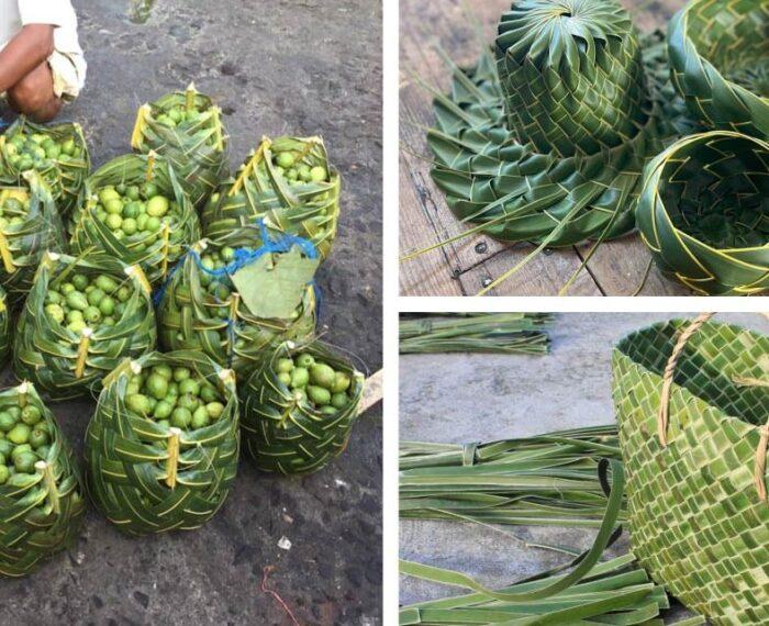 #Sustentabilidad: Mercados Sustituyen Bolsas Plásticas Y De Tela Por Tejidos Hechos Con Hojas De Coco
