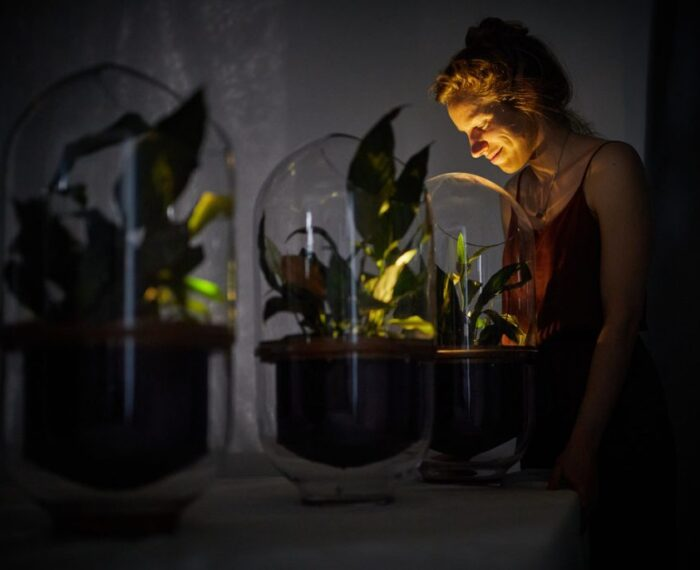#Sustentabilidad: Mujer Crea Una Lámpara Que Se Alimenta De La Energía Eléctrica De Las Plantas