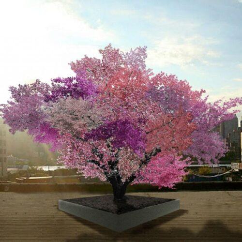 #Biodiversidad: Frankenstein, el árbol que puede producir 40 tipos diferentes de fruta